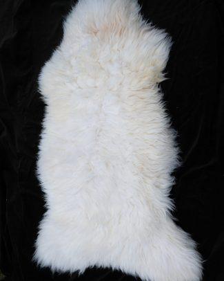 Schapenvacht wit, sheepskin white, Schaffsfell weis model 4 Texelse Schapenboet